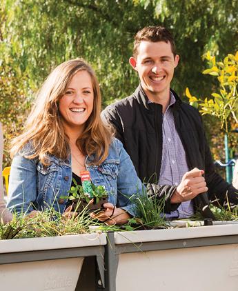 City gardens harvest bumper crops