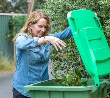 New bin for food and garden waste