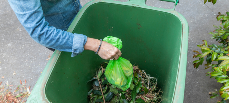 Have your say on new green waste collection to win