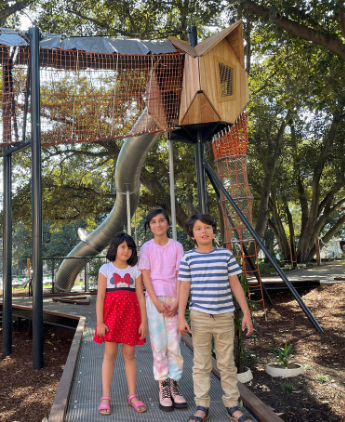 Treetop playground takes fun to new heights